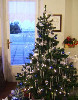 Addobbare la casa per il Natale